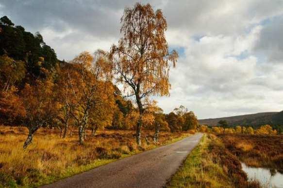 glen-strathfarrar-road