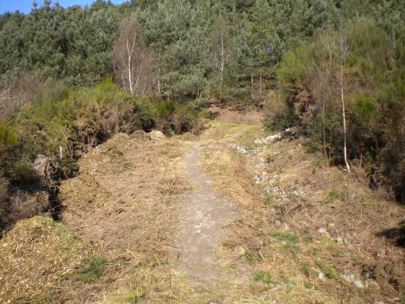 Quarry path repaired